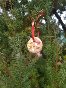 Plätzchen mit einer Schnur hängt in einem Baum