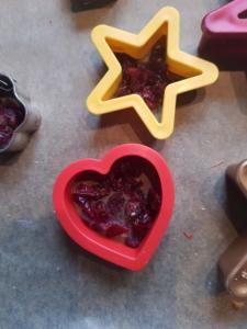 Klein geschnittene Cranberries wurden in Plätzchen-Formen gefüllt.